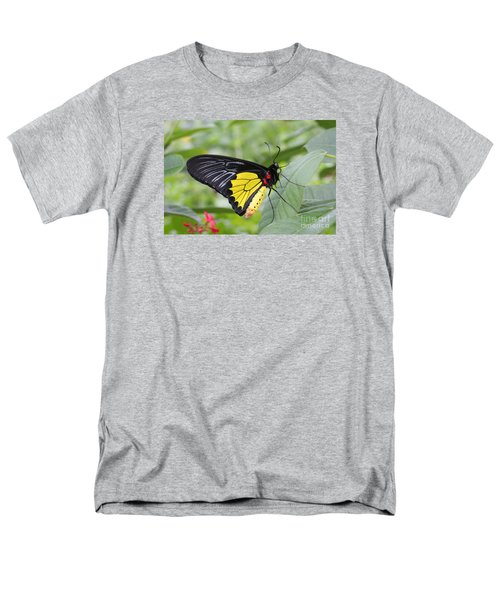 Men's T-Shirt  (Regular Fit) featuring the photograph Common Birdwing Butterfly by Judy Whitton