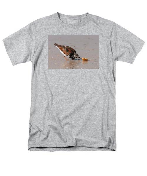 Curious Turnstone Men's T-Shirt  (Regular Fit) by Paul Rebmann