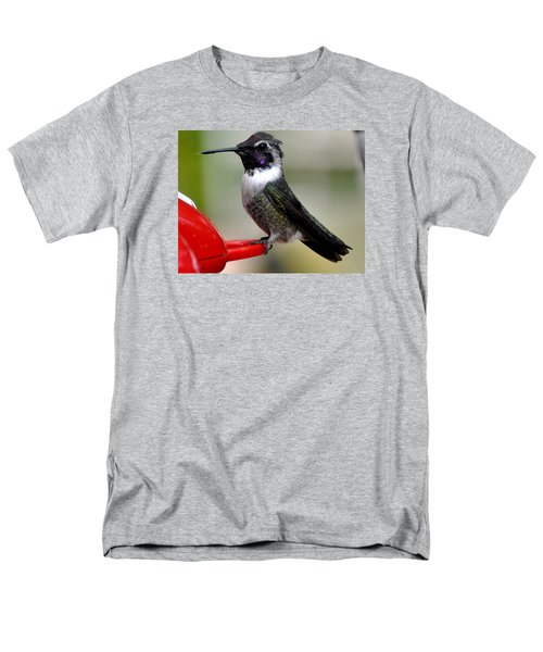 Men's T-Shirt  (Regular Fit) featuring the photograph Male Anna On Feeder Perch Posing by Jay Milo