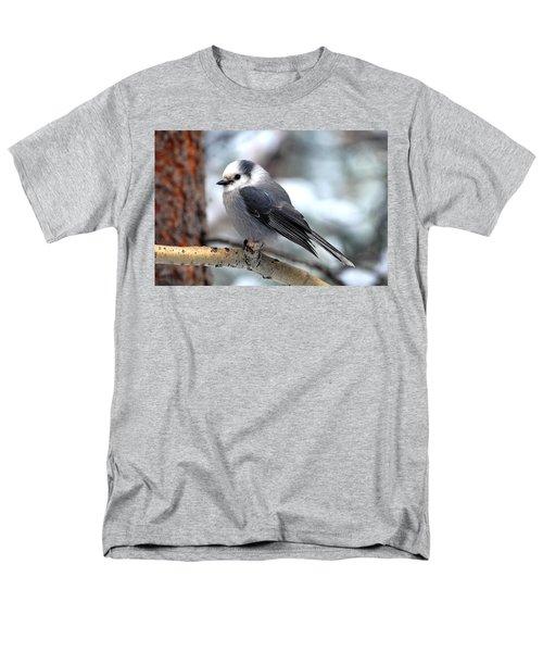 Gray Jay On Aspen Men's T-Shirt  (Regular Fit) by Marilyn Burton