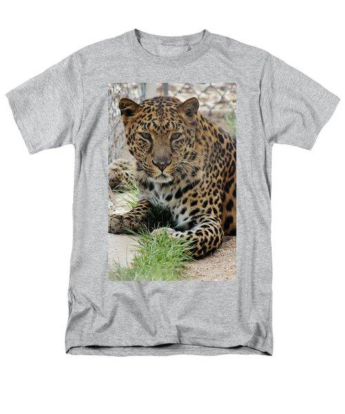 Leopard Lounging 1 Men's T-Shirt  (Regular Fit) by Diane Alexander