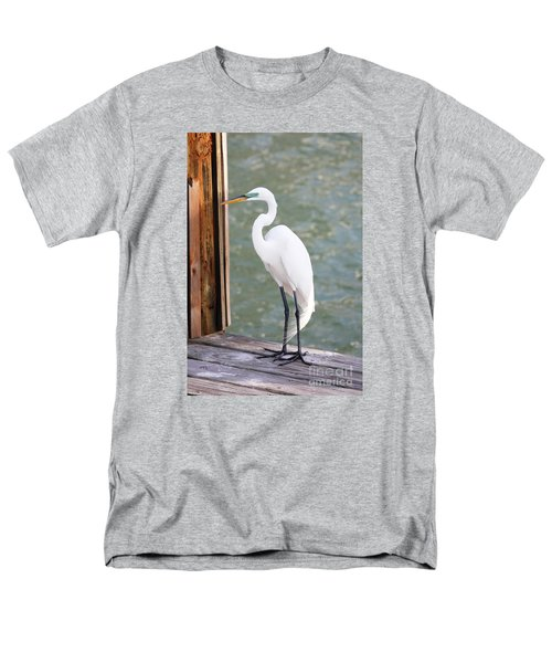 Pretty Great Egret Men's T-Shirt  (Regular Fit)