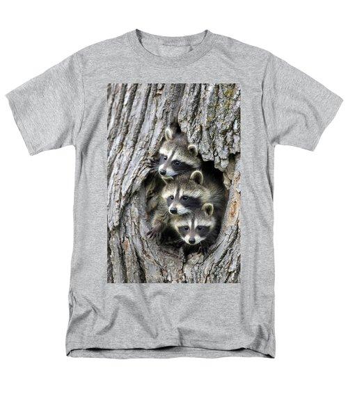 Raccoon Trio At Den Minnesota Men's T-Shirt  (Regular Fit) by Jurgen & Christine Sohns