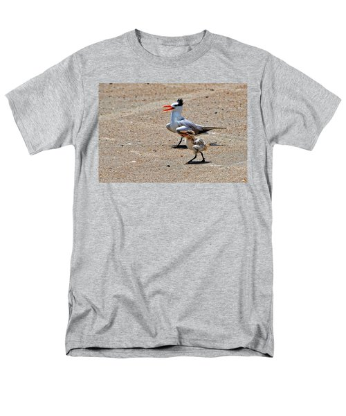Royal Tern With Chick Men's T-Shirt  (Regular Fit) by Ludwig Keck
