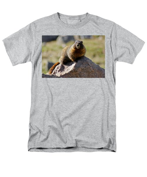 Morning Marmot Men's T-Shirt  (Regular Fit) by Colleen Coccia