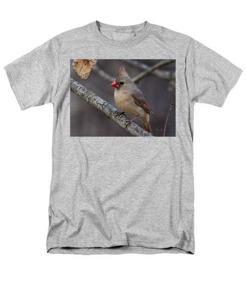 Female Cardinal Men's T-Shirt  (Regular Fit) by Diane Giurco