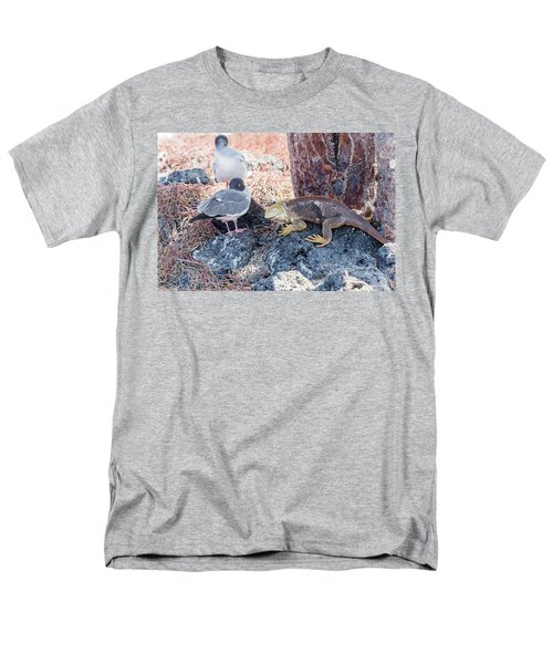Swallow Tailed Gull And Iguana On  Galapagos Islands Men's T-Shirt  (Regular Fit) by Marek Poplawski