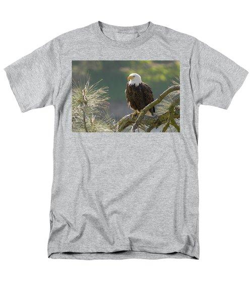 Bald Eagle Men's T-Shirt  (Regular Fit) by Doug Herr