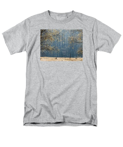 Birch Forest To The Morning Sun Men's T-Shirt  (Regular Fit) by Odon Czintos