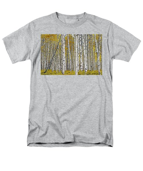 Birch Tree Grove With A Touch Of Yellow Color Men's T-Shirt  (Regular Fit) by Randall Nyhof