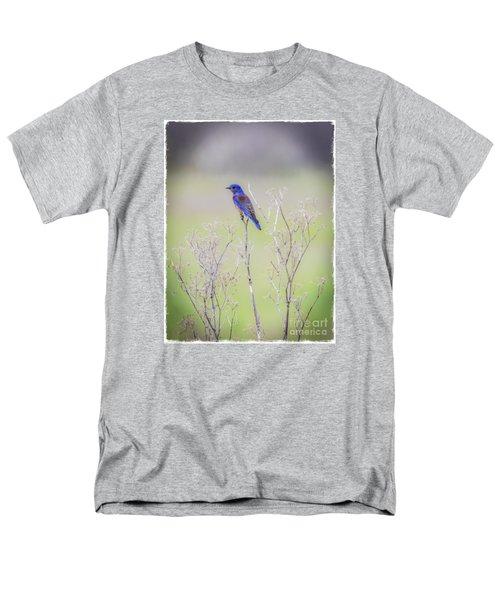 Bluebird On Hemlock Men's T-Shirt  (Regular Fit)