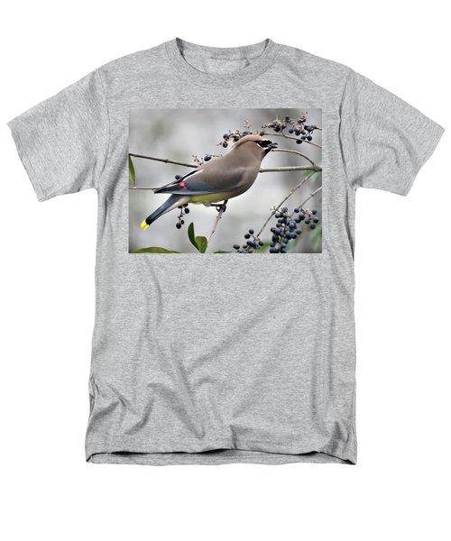 Cedar Waxwing 2 Men's T-Shirt  (Regular Fit) by Kathy Long