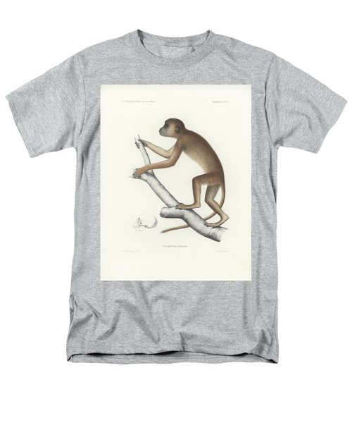 Central Yellow Baboon, Papio C. Cynocephalus Men's T-Shirt  (Regular Fit) by J D L Franz Wagner