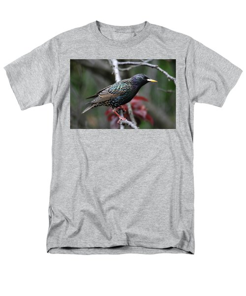 Common Starling Men's T-Shirt  (Regular Fit) by Trina Ansel