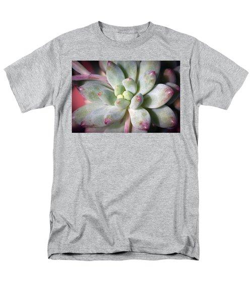 Cute Succulent Plant Men's T-Shirt  (Regular Fit) by Catherine Lau