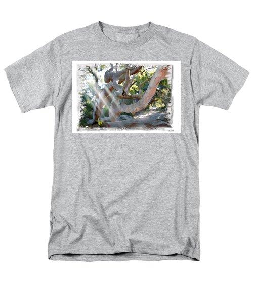 Do-00044 Mount Ettalong Men's T-Shirt  (Regular Fit) by Digital Oil
