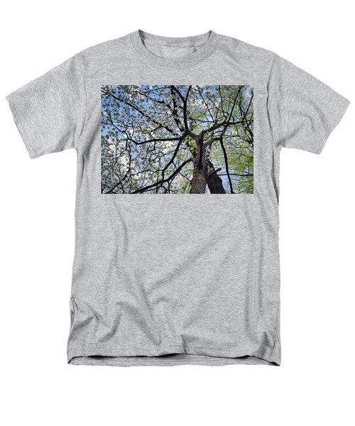 Dogwood Canopy Men's T-Shirt  (Regular Fit) by Cricket Hackmann