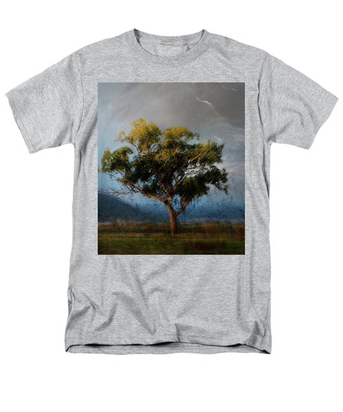 Eucalyptus Men's T-Shirt  (Regular Fit)
