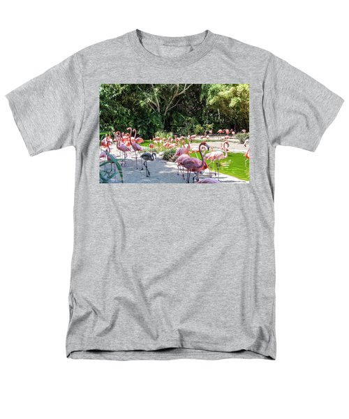 Flamingo Flock Men's T-Shirt  (Regular Fit) by Daniel Hebard