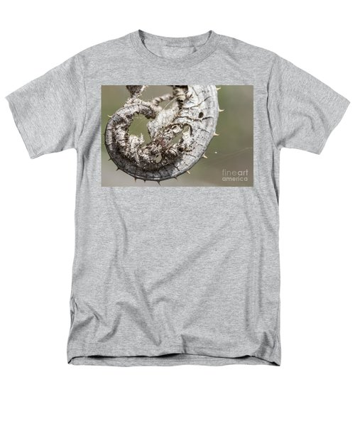 Men's T-Shirt  (Regular Fit) featuring the photograph Furrow Orb Weaver On A Dry Thisle Leaf by Jivko Nakev