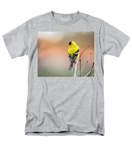Goldfinch At Sunrise Men's T-Shirt  (Regular Fit) by Susan Capuano