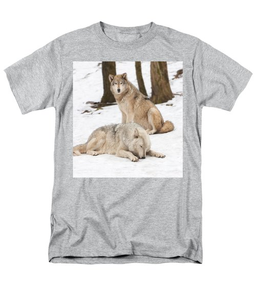 Guarding His Companion Men's T-Shirt  (Regular Fit)