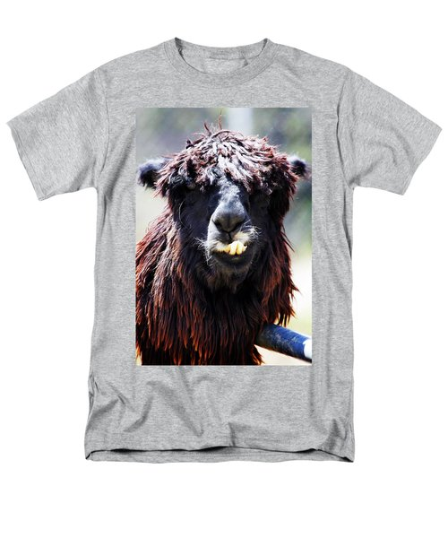 Men's T-Shirt  (Regular Fit) featuring the photograph Is Your Mama A Llama? by Anthony Jones