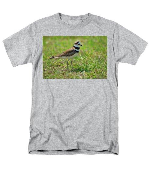 Killdeer Men's T-Shirt  (Regular Fit) by Rich Leighton