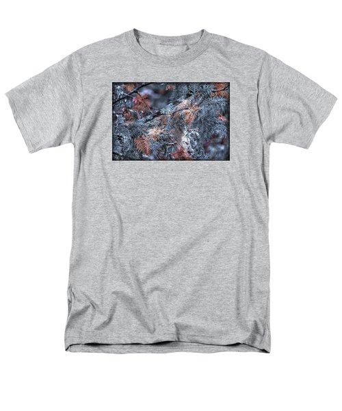 Ceader Men's T-Shirt  (Regular Fit)