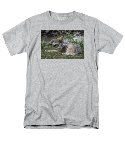 Men's T-Shirt  (Regular Fit) featuring the photograph Mexican Wolf 20120714_112a by Tina Hopkins