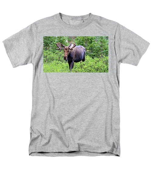 Men's T-Shirt  (Regular Fit) featuring the photograph Moose Trail by Scott Mahon