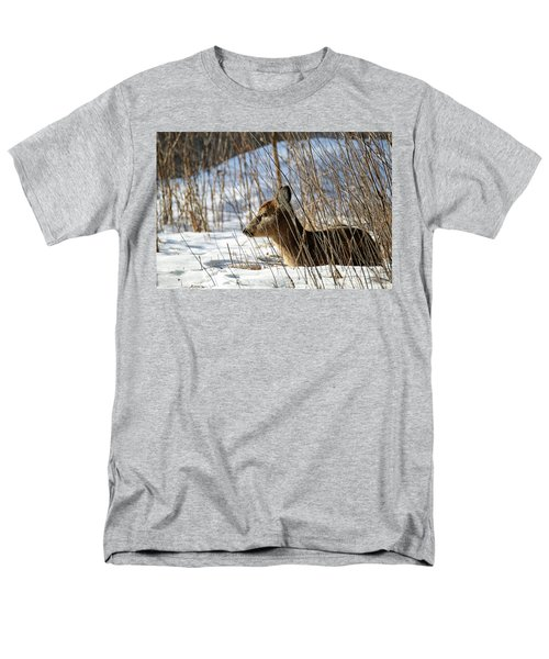 Napping Fawn Men's T-Shirt  (Regular Fit) by Brook Burling