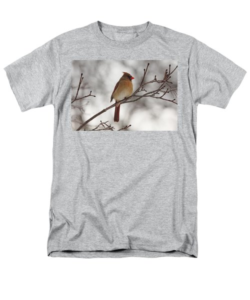 Perched Female Red Cardinal Men's T-Shirt  (Regular Fit) by Debbie Oppermann