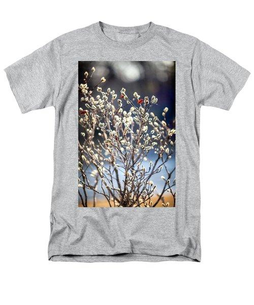 Pussy Willow Men's T-Shirt  (Regular Fit) by Robert Clifford