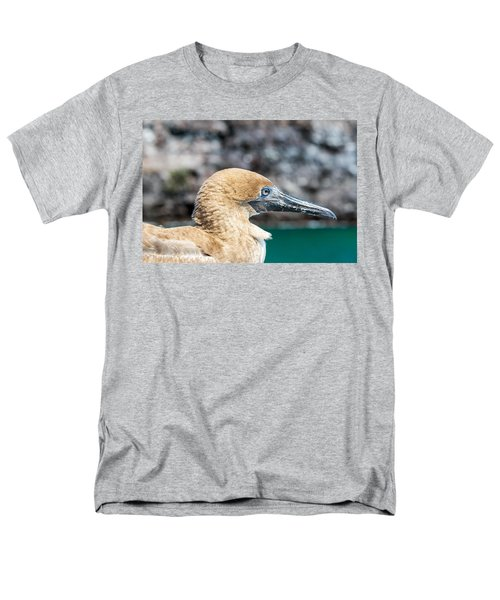 Red Footed Booby Juvenile Men's T-Shirt  (Regular Fit) by Jess Kraft