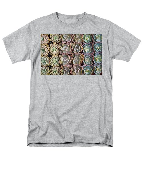 Rows Of Succulents  Men's T-Shirt  (Regular Fit) by Catherine Lau