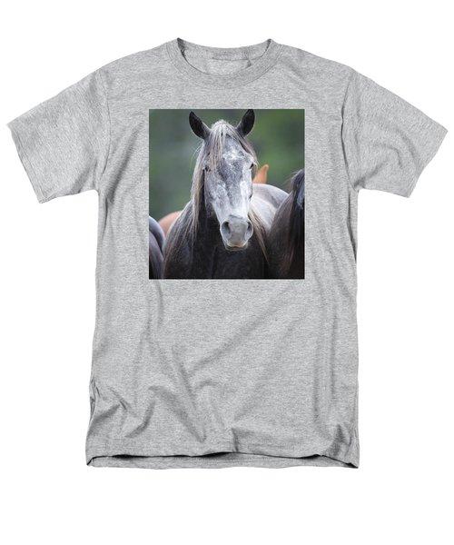 Steel Grey Men's T-Shirt  (Regular Fit)