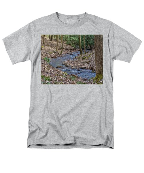 Stream Up The Hollow Men's T-Shirt  (Regular Fit) by Denise Romano