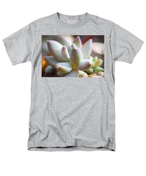 Succulent Cute  Men's T-Shirt  (Regular Fit) by Catherine Lau