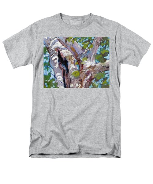 Sunlight On Sycamore Men's T-Shirt  (Regular Fit) by John Lautermilch