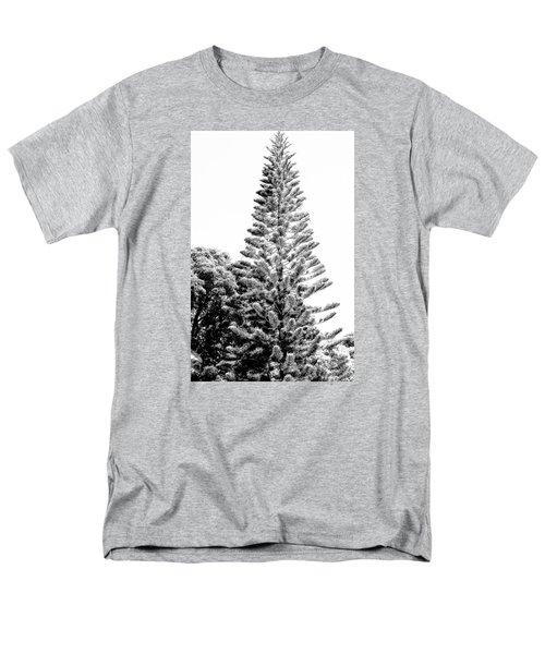 Tall Tree Bw - Lan11 Men's T-Shirt  (Regular Fit) by G L Sarti