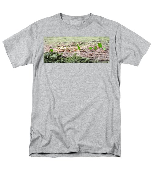 The Leaf Parade  Men's T-Shirt  (Regular Fit) by Betsy Knapp