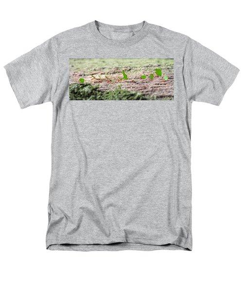 The Leaf Parade  Men's T-Shirt  (Regular Fit)