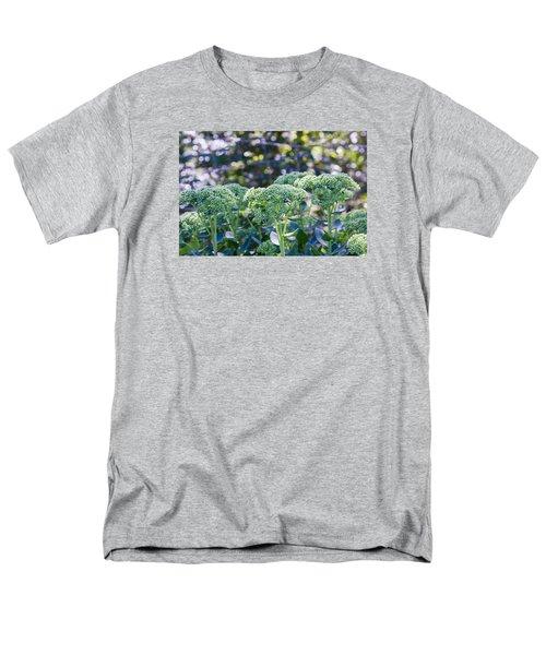 The Sedum Forest Men's T-Shirt  (Regular Fit)
