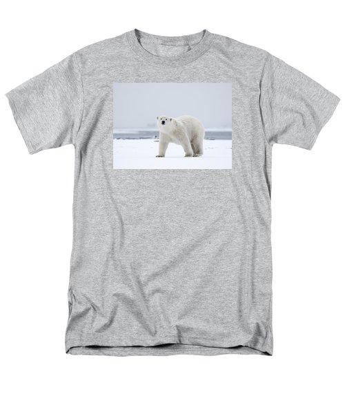Watchful In The Arctic Men's T-Shirt  (Regular Fit)