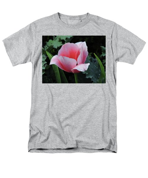 Welcome Tulip Men's T-Shirt  (Regular Fit) by Penny Lisowski