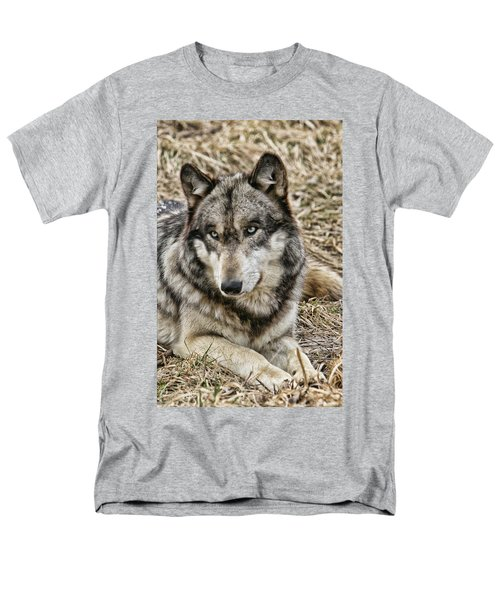 Wolf Portrait Men's T-Shirt  (Regular Fit) by Shari Jardina