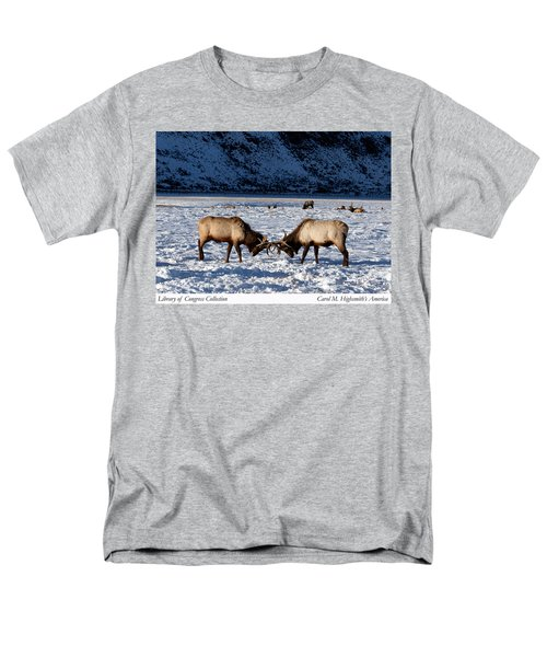 Young Bull Elk In Jackson  Hole In Wyoming Men's T-Shirt  (Regular Fit) by Carol M Highsmith