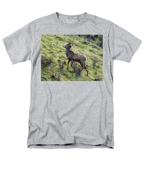 Men's T-Shirt  (Regular Fit) featuring the photograph Young Ram Climbing by Mike Dawson