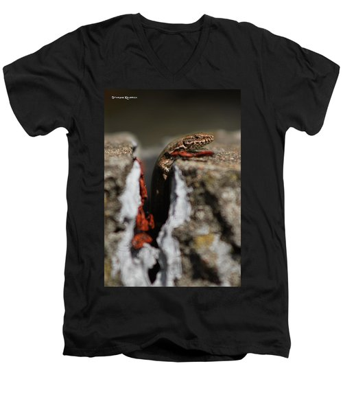 Men's V-Neck T-Shirt featuring the photograph  A Lizard Emerging From Its Hole by Stwayne Keubrick